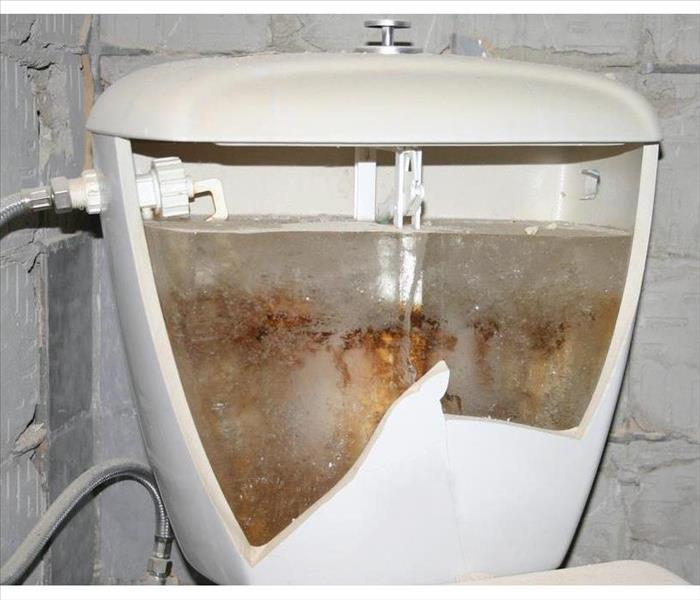 Cracked toilet tank